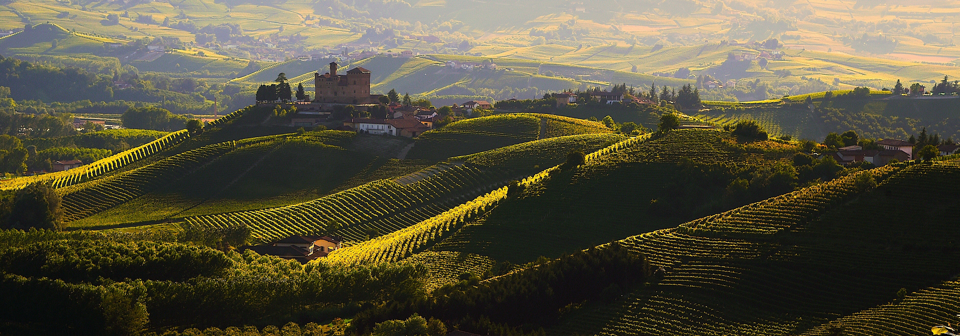 Langhe Experience - Tours & Events - Authentic Experiences